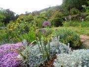 Thoiras-jardin-sec-4