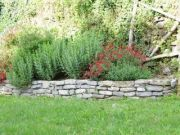 Jardiniere-jardin-sec