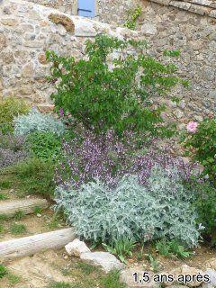 jardin-sec3