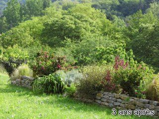 Jardin-cevennes-ecologique-2