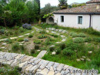 jardin-autonome-en-eau-11