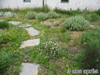 jardin-autonome-en-eau-4