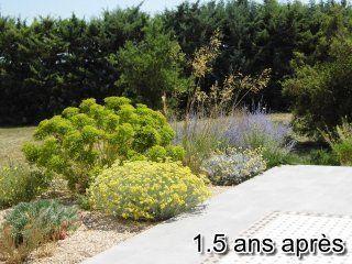 Liouc-jardin-sec-2017-1