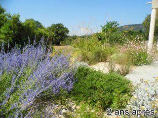 jardin-sec-sans-eau2