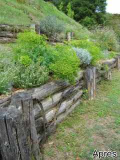 Jardin-sec-cevennes-gard14