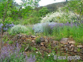 Thoiras-jardin-sec